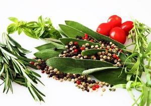 Botanicals für die Gin Herstellung