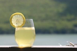 Gin Sour Rezept